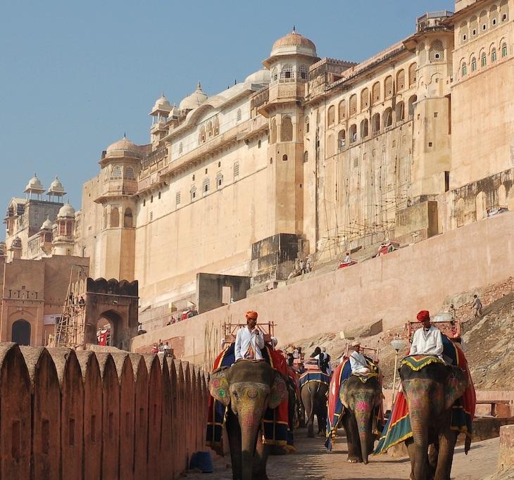 Elefante palacio de amer Jaipur