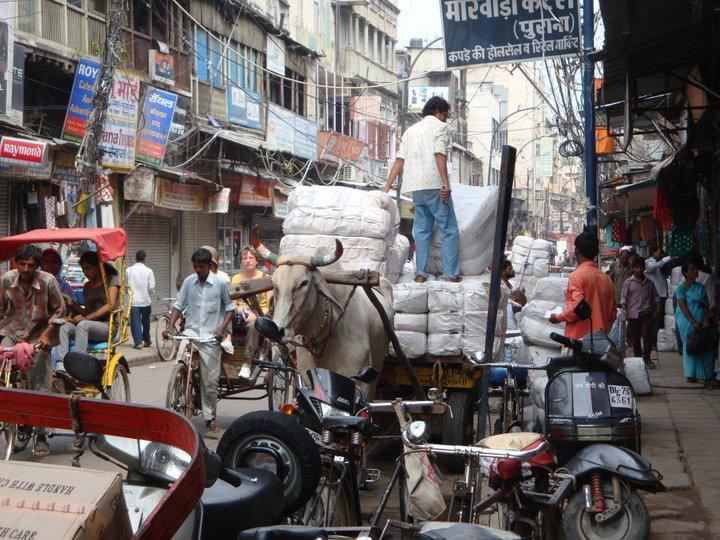 Caos Vieja Delhi