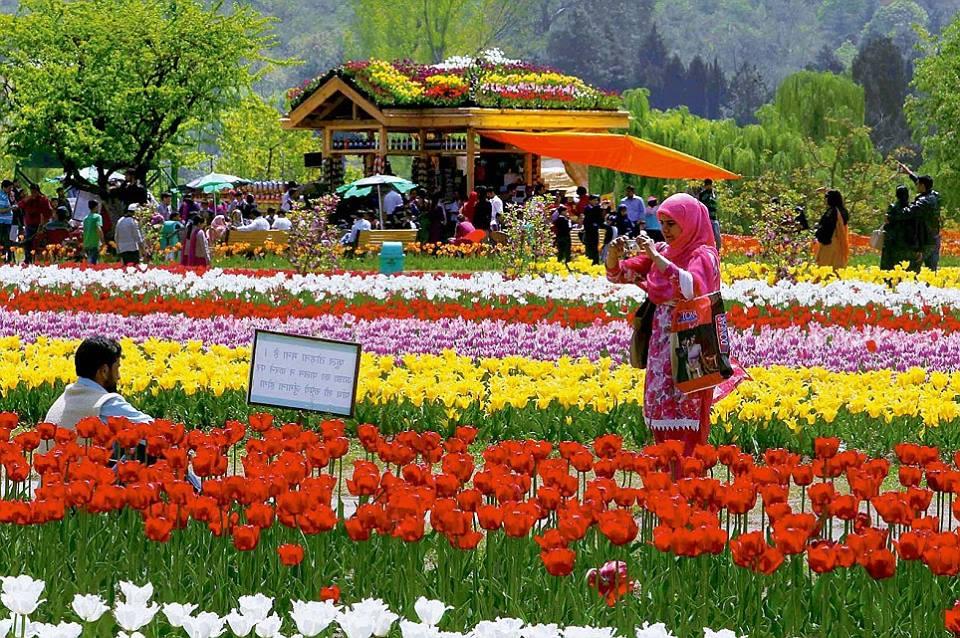 Shalimar jardin Srinagar