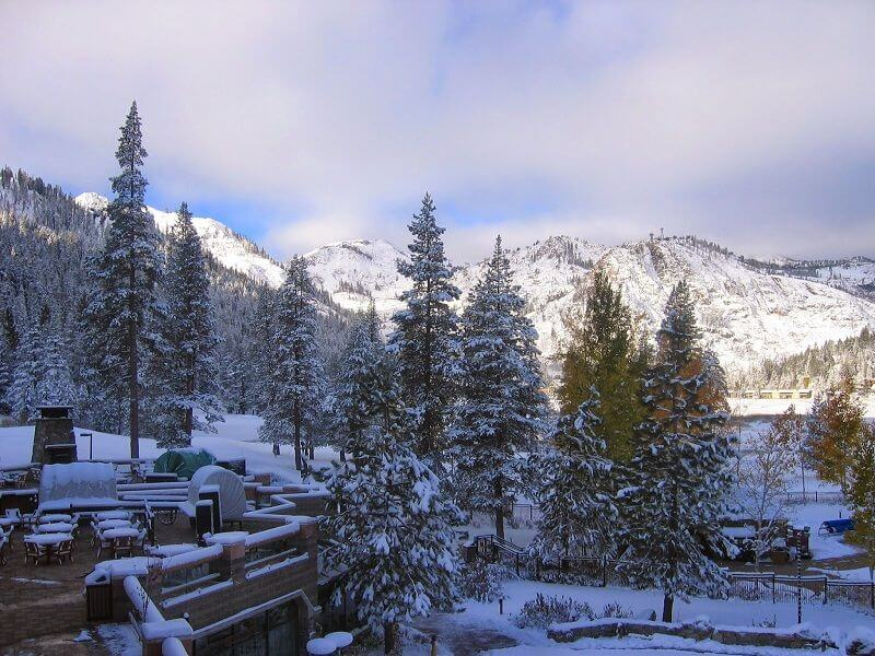 lansdowne nieve