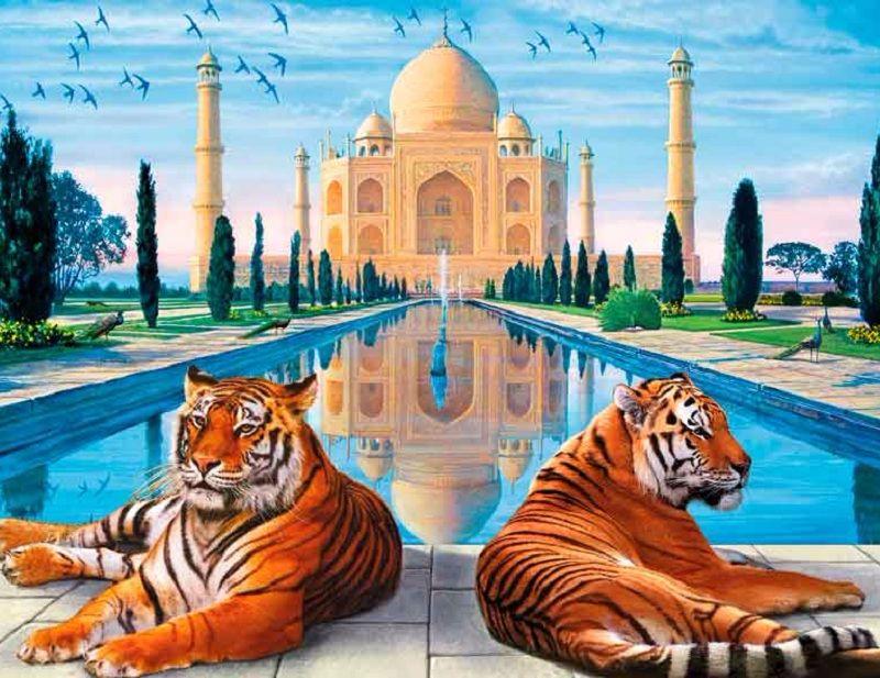 Taj Mahal y Tigre India